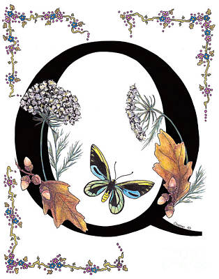 Q Is For Queen Annes Lace And Butterfly Original