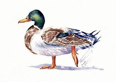 Waterfowl Painting - Quack by Debra Hall