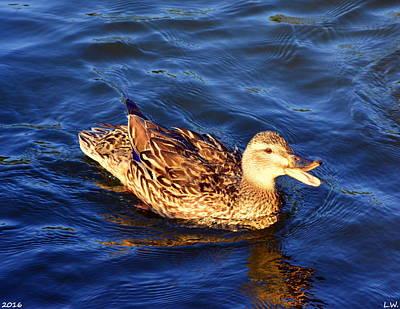 Photograph - Quack by Lisa Wooten