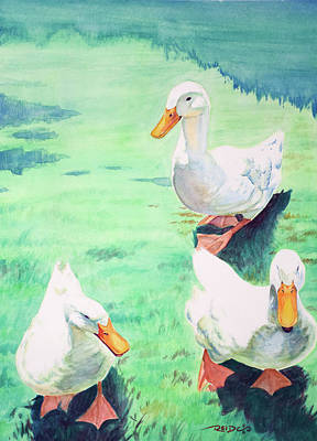 Domestic Duck Painting - Quack Quack by Christopher Reid
