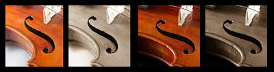 Still Life Photograph - Quadriptych Of Musical Curves by Iordanis Pallikaras