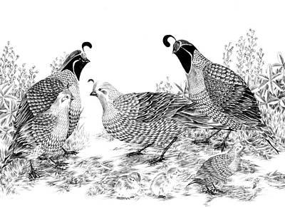 Quail Family Reunion Art Print