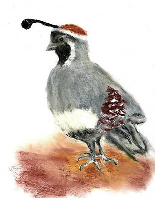 Painting - Quail by Marilyn Barton