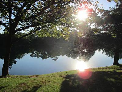 Quail Pond Original by John Adams