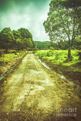 Quaint Tasmanian Dirt Road Landscape Art Print