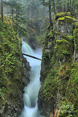 Photograph - Qualicum Falls Spectacular by Adam Jewell
