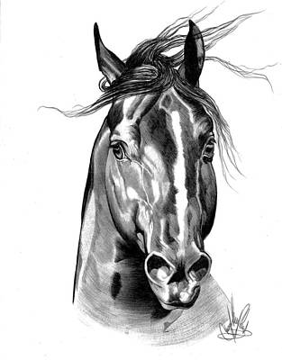 Quarter Horse Head Shot In Bic Pen Art Print by Cheryl Poland