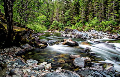 Photograph - Quartzville Creek by Anthony Dezenzio