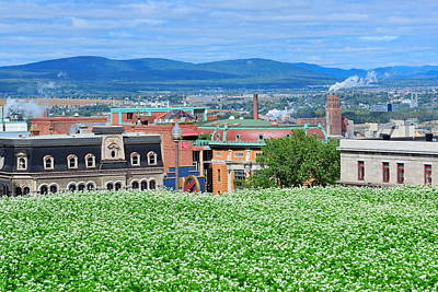 Photograph - Quebec City View by Songquan Deng