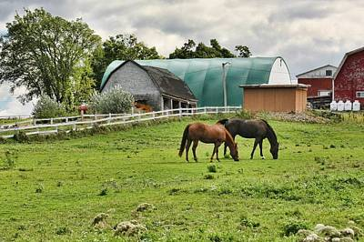 Photograph - Quebec Farm by Tatiana Travelways