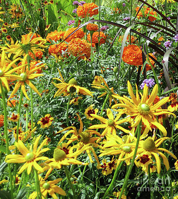 Photograph - Quebec Flowers 1 by Randall Weidner
