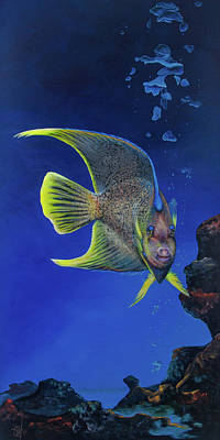 Painting - Queen Angel Fish by Michelle Iglesias