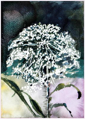 Indigo Drawing - Queen Ann Lace by Mindy Newman