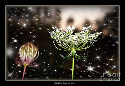 Photograph - Queen Annes Lace And Sparkles At Dusk by Deb Badt-Covell