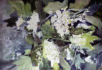 Painting - Queen Anne's Lace by Connie Williams