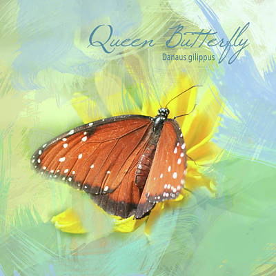 Photograph - Queen Butterfly Watercolor Photo by Heidi Hermes