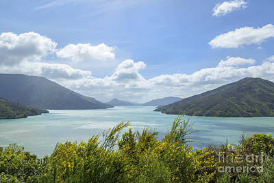 Queen Charlotte Sound, New Zealand Art Print by Julia Hiebaum