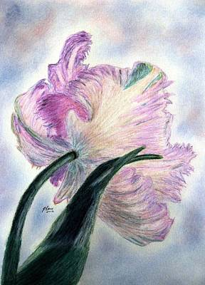 Lavender Drawing - Queen Of Spring by Angela Davies