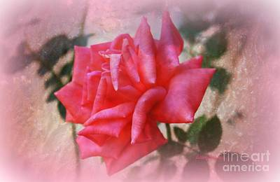 Photograph - The  Rose That Last Forever by Sherri's - Of Palm Springs