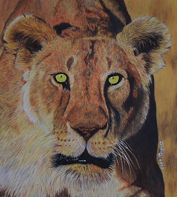 Queen Of The Jungle Art Print by Don MacCarthy