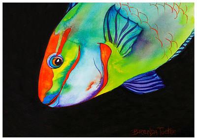 Parrotfish Painting - Queen Parrotfish On Black by Brenda Tucker