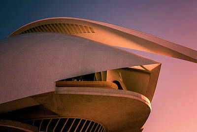 Photograph - Queen Sofia Palace Of The Arts Valencia Spain by Joan Carroll
