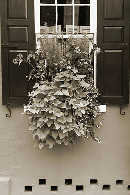 Planter Wall Art - Photograph - Queen Street Flowers Charleston Sc by Dustin K Ryan