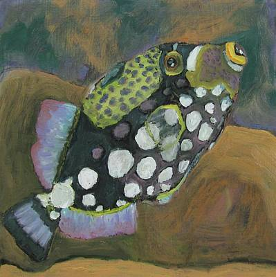 Queen Trigger Fish Art Print