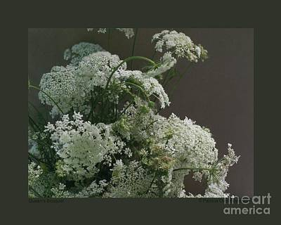 Photograph - Queen's Bouquet by Patricia Overmoyer