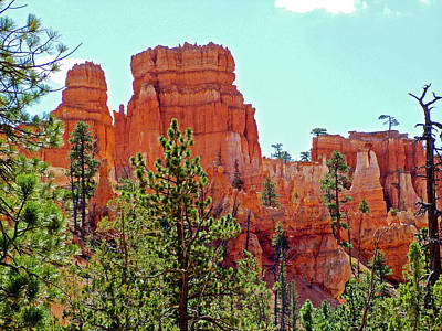 Photograph - Queen's Garden Trail In Bryce Canyon National Park, Utah by Ruth Hager