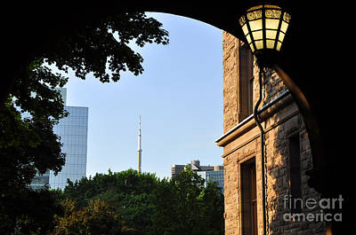 Photograph - Queen's Park by Andrew Dinh