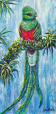 Painting - Quetzal by Gail Butler
