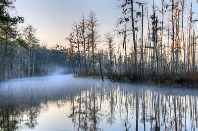 Cypress Swamp Photograph - Quiet 2 by JC Findley