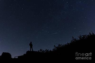 Photograph - Quiet Contemplation by Steve Purnell