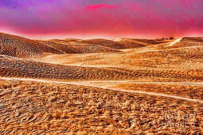 Photograph - Quiet Desert by Rick Bragan