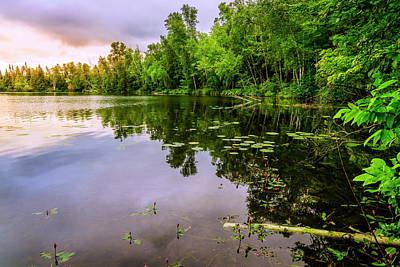 Photograph - Quiet Lake by Alexey Stiop