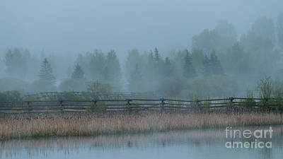 Photograph - Quiet Moments by Sandra Bronstein
