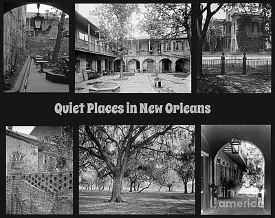 Fruits And Vegetables Still Life - Quiet New Orleans by John Malone