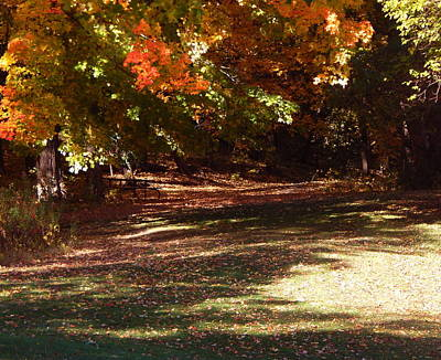 Photograph - Quiet Picnic Place by Wild Thing