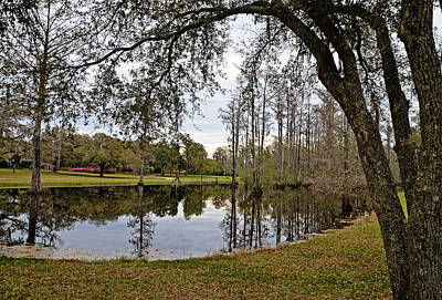 Photograph - Quiet Pond by Linda Brown