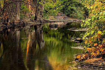 Photograph - Quiet River by Scott Read
