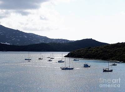 Photograph - Quiet St. Thomas Cove by Neil Zimmerman