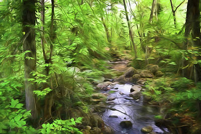 Photograph - Quiet Stream by Bonnie Bruno