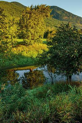 Photograph - Quiet Summer Morning by Albert Seger