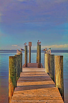 Photograph - Quiet Time by HH Photography of Florida