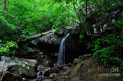 Photograph - Quiet Waterfall by Eric Liller