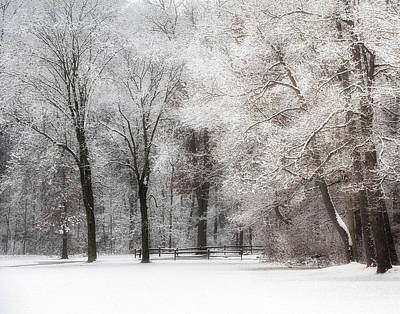 Photograph - Quiet Winter  by Richard Kopchock