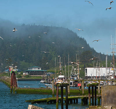 Photograph - Quileute Fishing Marina by Cascade Colors