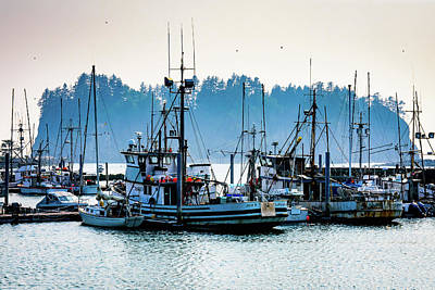 Photograph - Quileute Harbor Marina by Michael McAuliffe