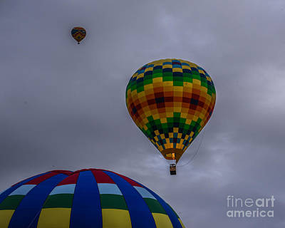 Photograph - Quilted Balloon by Grace Grogan